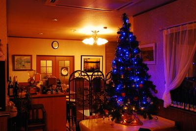 2006_0109初雪クリスマスツリー0004.JPG