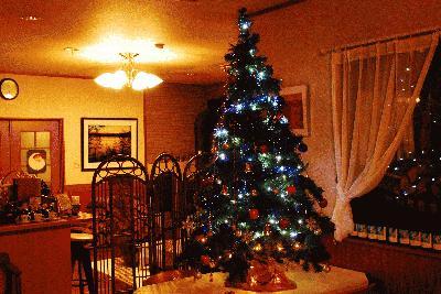 2006_0109初雪クリスマスツリー0007.JPG